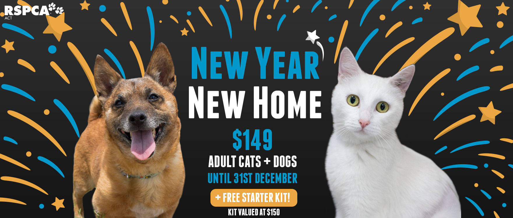 Help us find forever homes for our adult animals!