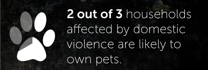 2 out 3 household affected by domestic violence are likely to own pets
