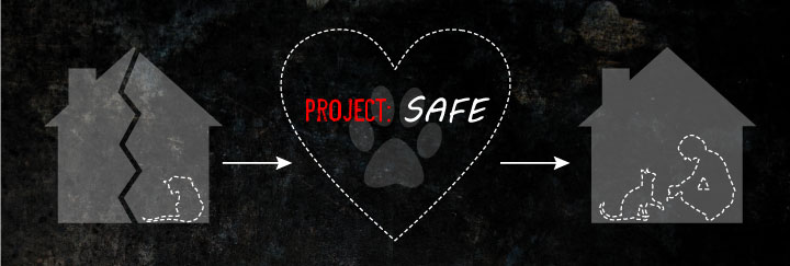 Project SAFE infographic