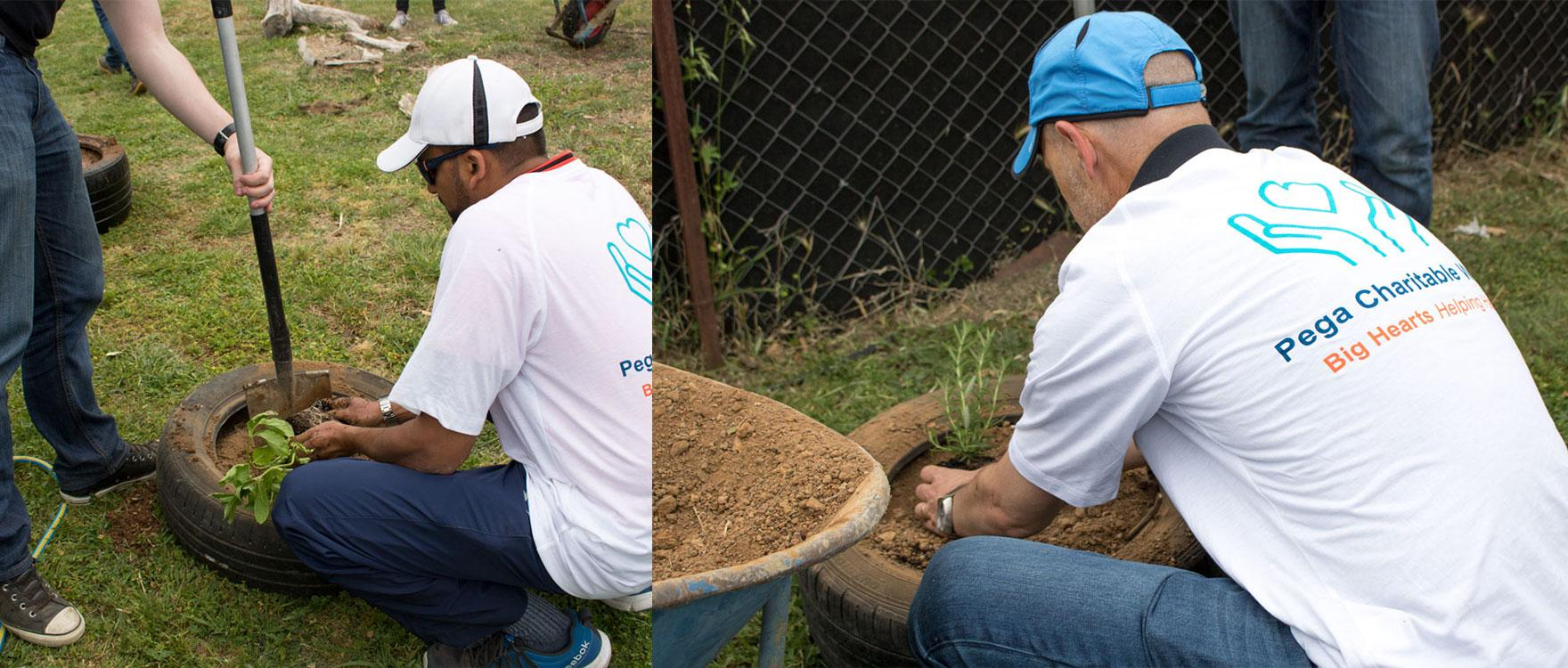 Pega Systems planting a sensory garden for our dogs